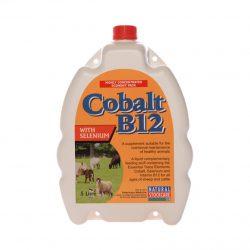 Cobalt B12